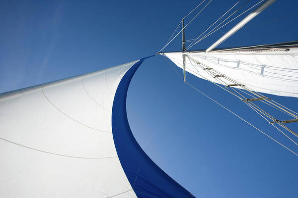 Curve Art Print featuring the photograph Sailing by Tammy616