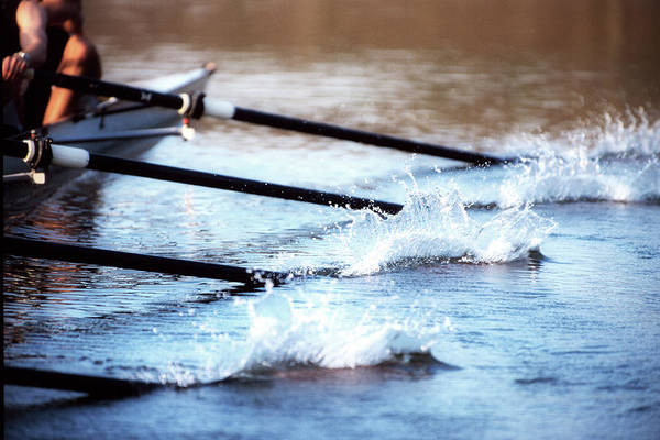 Sport Rowing Art Print featuring the photograph Sculling Team Rowing On Water by Robert Llewellyn