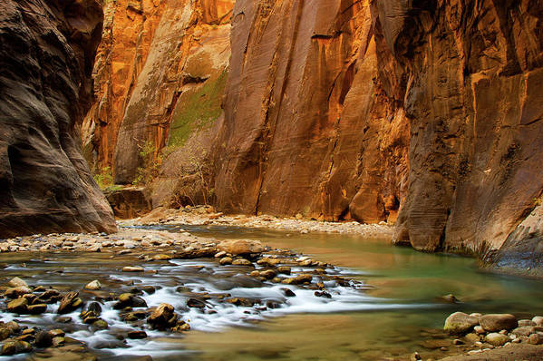 Zion Narrows Art Print featuring the photograph The Narrows by Beklaus