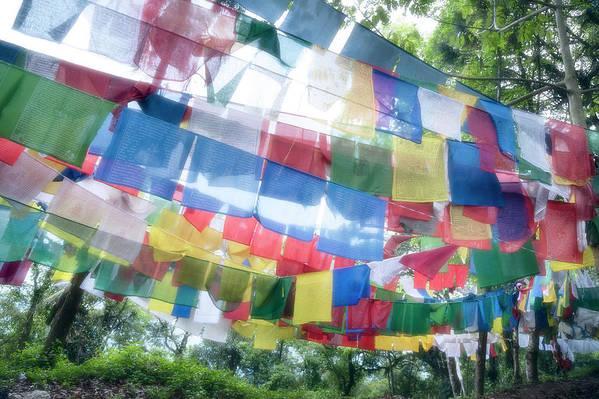 Hanging Art Print featuring the photograph Tibetan Buddhist Prayer Flags by Glen Allison