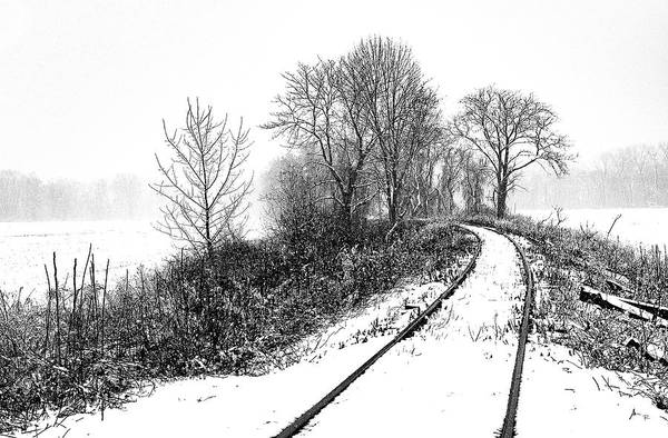 Art Print featuring the photograph Tracks in Snow by Tom Romeo