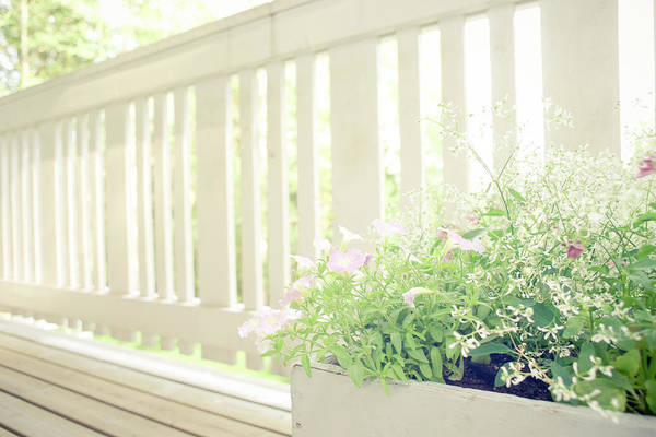 Outdoors Art Print featuring the photograph White Fence And Flowers by Photographer Mikael Nyberg
