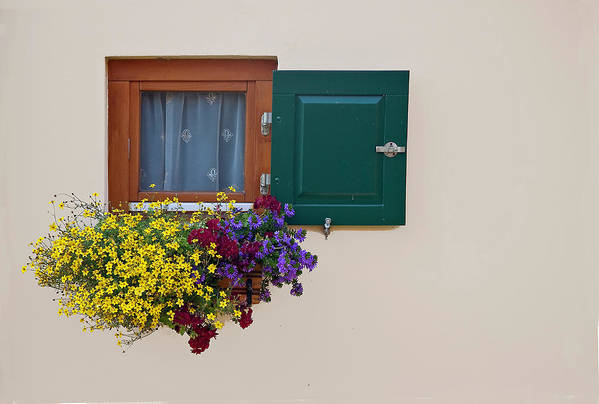 Outdoors Art Print featuring the photograph Window With Flowers by Enzo D.