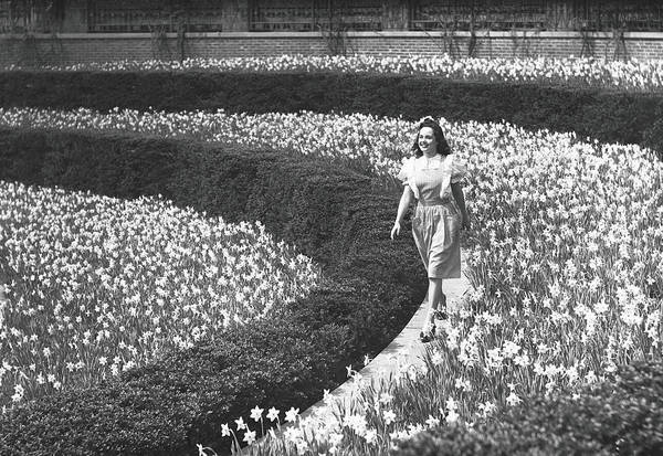 Flowerbed Art Print featuring the photograph Woman Walking On Flowerbed, B&w by George Marks
