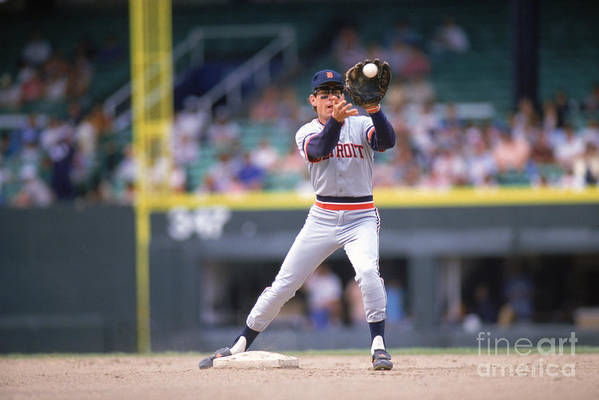 American League Baseball Art Print featuring the photograph Alan Trammell by Ron Vesely