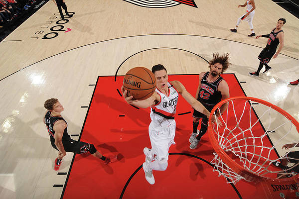 Nba Pro Basketball Art Print featuring the photograph Zach Collins by Cameron Browne