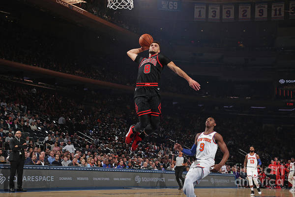 Chicago Bulls Art Print featuring the photograph Zach Lavine by Nathaniel S. Butler