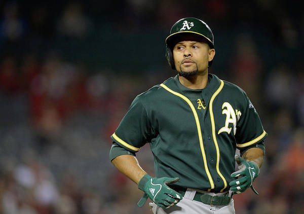 American League Baseball Art Print featuring the photograph Coco Crisp by Harry How