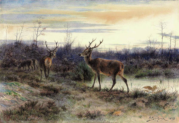 Deers In The Forest At Fontainebleau Art Print featuring the painting Deers In The Forest At Fontainebleau - Digital Remastered Edition by Rosa Bonheur
