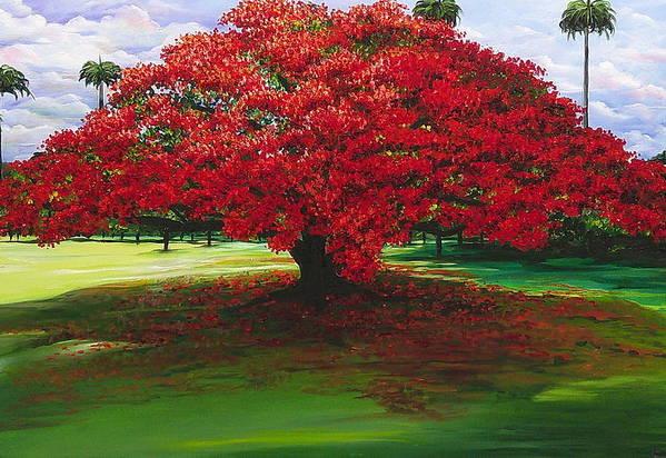 Flamboyant Tree Art Print featuring the painting Flamboyant Ablaze by Karin Dawn Kelshall- Best