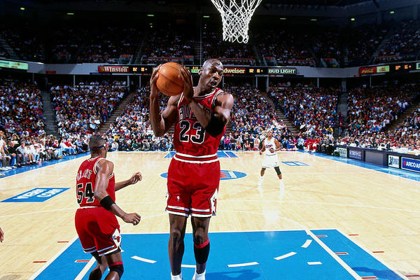 Chicago Bulls Art Print featuring the photograph Horace Grant and Michael Jordan by Brian Drake