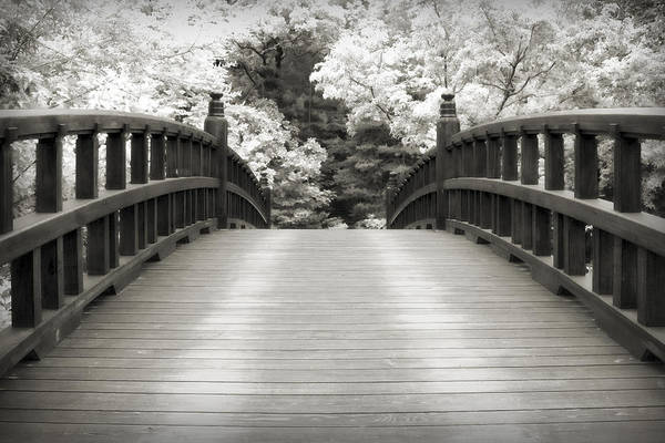 3scape Art Print featuring the photograph Japanese Dream Infrared by Adam Romanowicz