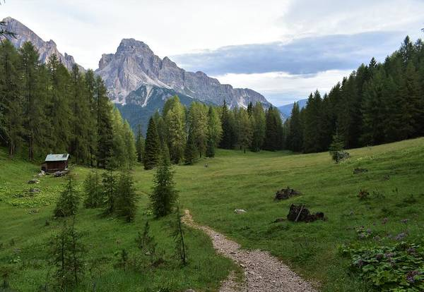 Dolomites Art Print featuring the photograph Meadow in the dolomites by Luca Lautenschlaeger