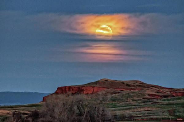 Miller Moon 1 by Fiskr Larsen