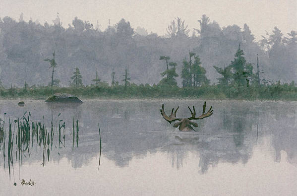 Moose Art Print featuring the painting Moose Crossing by Brent Ander