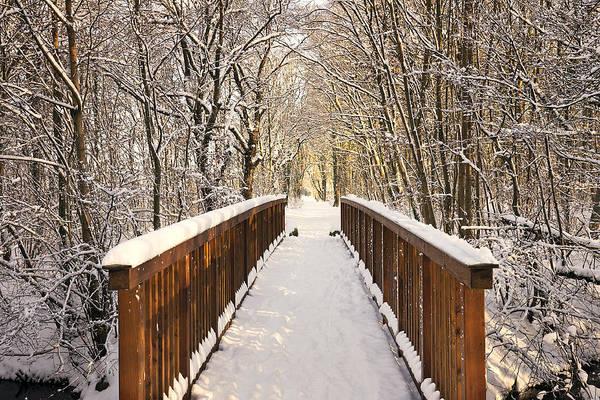 Snow Art Print featuring the photograph Towards The Winter Wonderland by Bernd Schunack