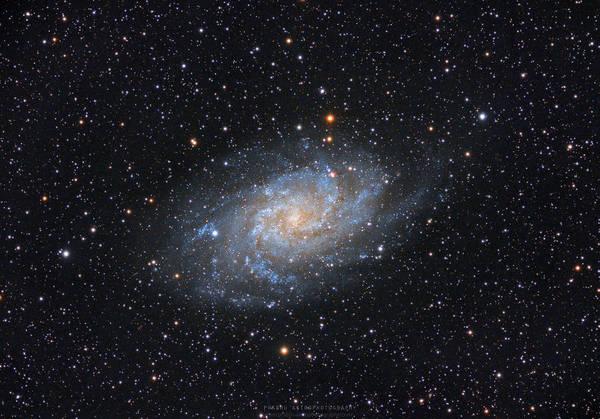 Galaxy Art Print featuring the photograph Triangulum Galaxy by Prabhu Astrophotography
