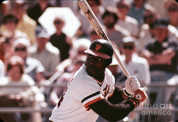 Candlestick Park Art Print featuring the photograph Willie Mccovey by Mlb Photos