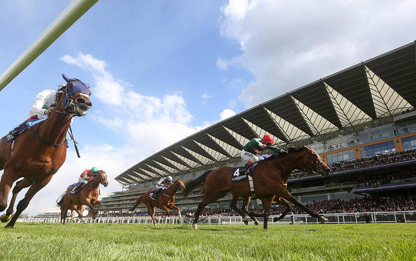 Ascot Racecourse Art Print featuring the photograph Ascot Races by Charlie Crowhurst