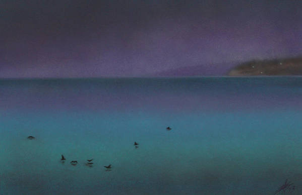 Nature Art Print featuring the painting Ocean of Glass with Seabirds by Robin Street-Morris