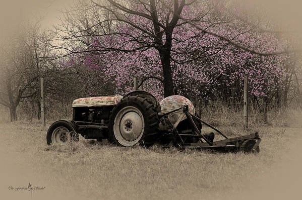 Tractor Art Print featuring the photograph Old Tractor And Redbuds Sepia by Jill Westbrook