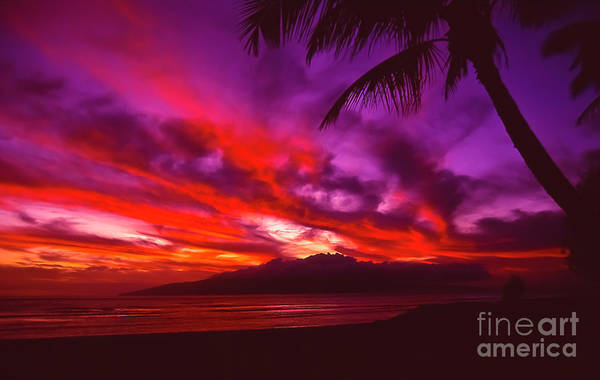 Landscapes Art Print featuring the photograph Hand of Fire by Jim Cazel