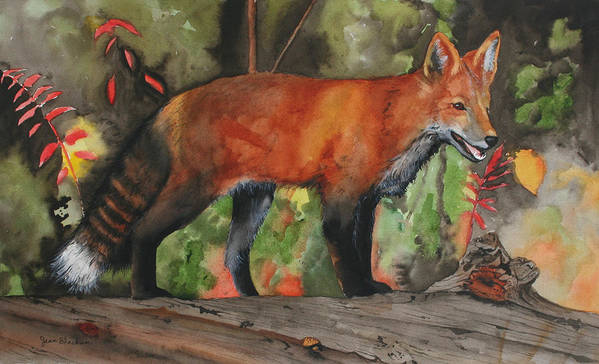 Fox Art Print featuring the painting Hiding In Plain Sight by Jean Blackmer