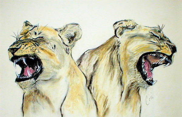 Lion Art Print featuring the drawing Roaring Times by Cori Solomon