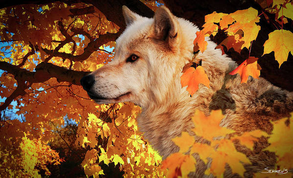 Wolf Art Print featuring the photograph Autumn Leaves And Wolf by Gordon Semmens