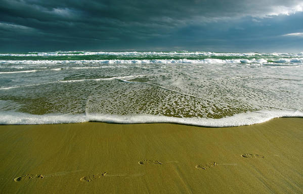 Water's Edge Art Print featuring the photograph Footsteps And Storm Light by Jill Ferry