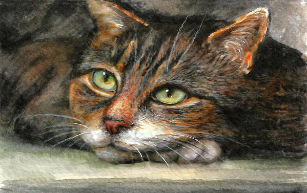Cat Art Print featuring the painting Kitty by Natalja Picugina