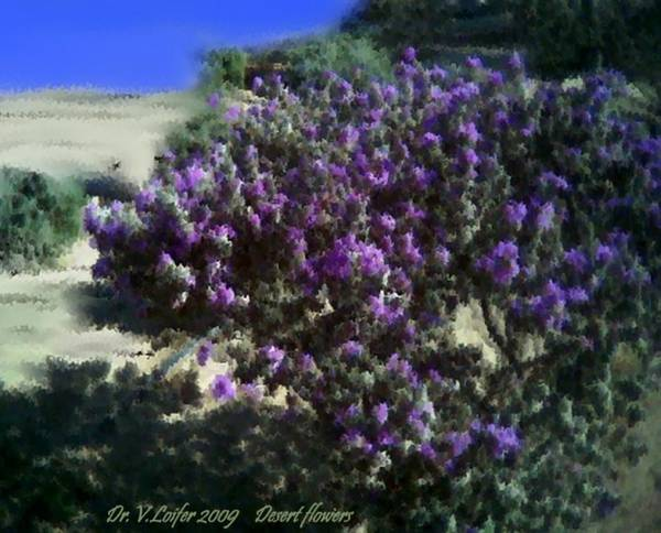 Landscape Art Print featuring the digital art Desert flowers by Dr Loifer Vladimir