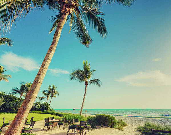 Vacations Art Print featuring the photograph Naple Beach Palms by Thepalmer