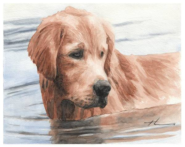 Www.miketheuer.com Setter Dog In Water Watercolor Portrait Art Print featuring the drawing Setter Dog In Water Watercolor Portrait by Mike Theuer