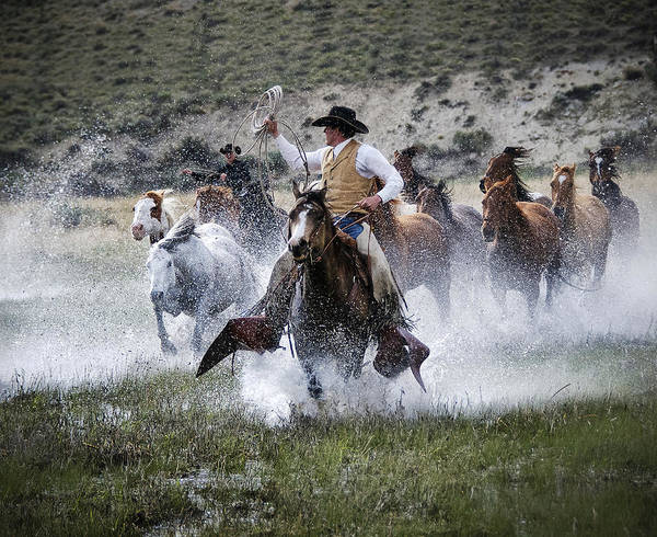 Sombrero Ranch Art Print featuring the photograph Water Wranglers by Pamela Steege