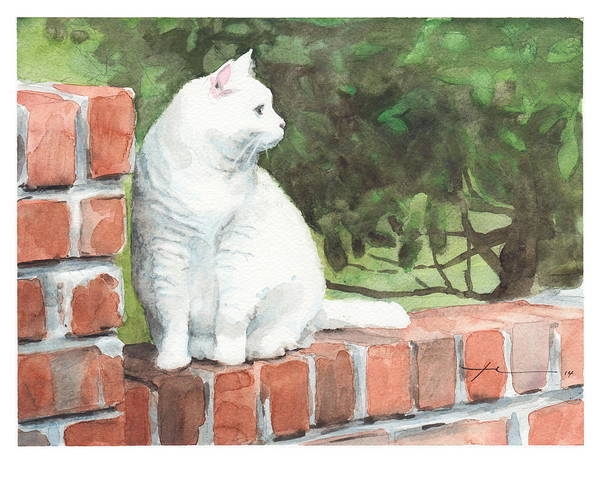 <a Href=http://miketheuer.com>www.miketheuer.com</a> White Cat On Brick Wall Watercolor Portrait Art Print featuring the painting White Cat On Brick Wall Watercolor Portrait by Mike Theuer