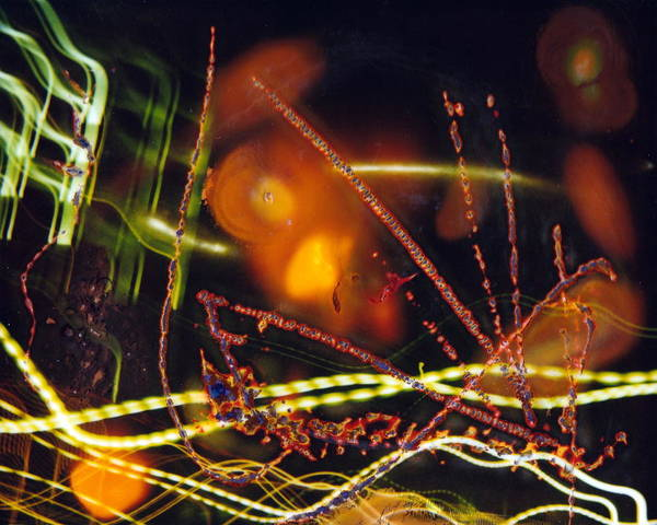 � Art Print featuring the photograph Chicago Lights 4 by JC Armbruster