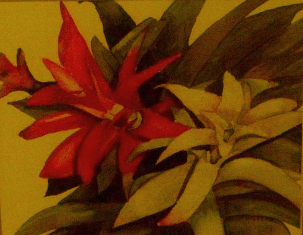 Flower Art Print featuring the painting Christmas Flowers by Patricia Halstead