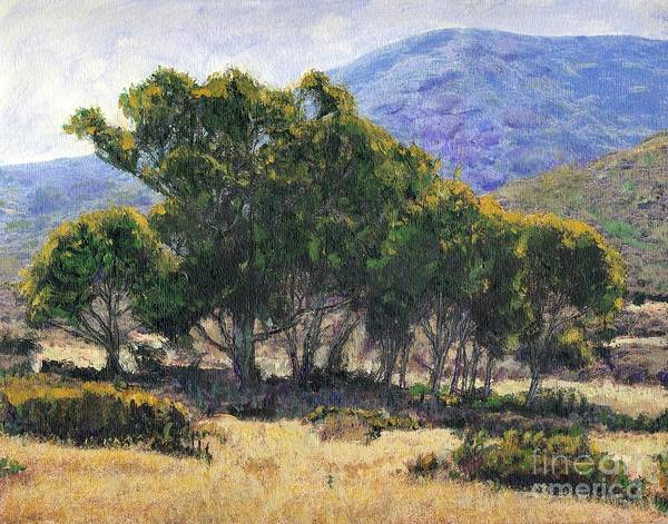 California Art Print featuring the painting Eucalyptus Grove Catalina by Randy Sprout