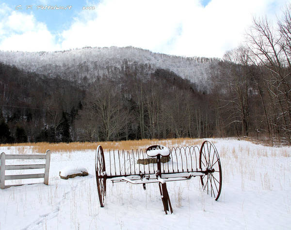 Snow Art Print featuring the photograph January Day by Carolyn Postelwait