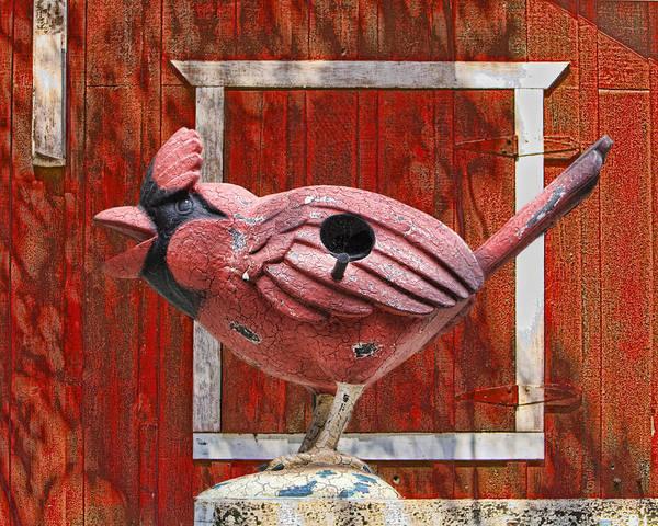 Bird Art Print featuring the digital art Bird House by Chuck Brittenham