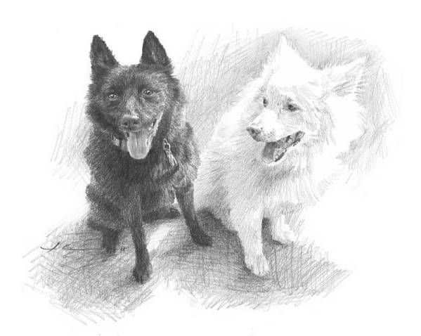 Www.miketheuer.com Black Dog White Dog Drawing Art Print featuring the drawing Black Dog White Dog Drawing by Mike Theuer