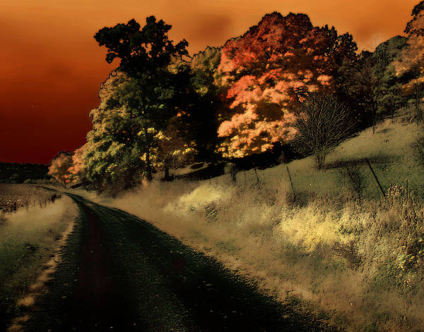 Road Art Print featuring the photograph Coles County by Jim Painter
