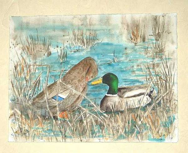 Mallards Art Print featuring the painting Drake and Hen by Diane Ziemski