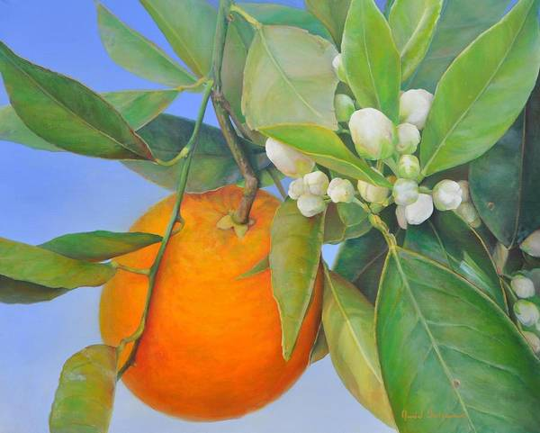 Floral Painting Art Print featuring the painting Orange en Bouton by Muriel Dolemieux