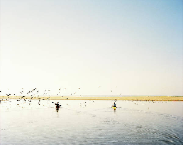 People Art Print featuring the photograph Men Paddling Kayaks To The Beach by Julien Capmeil