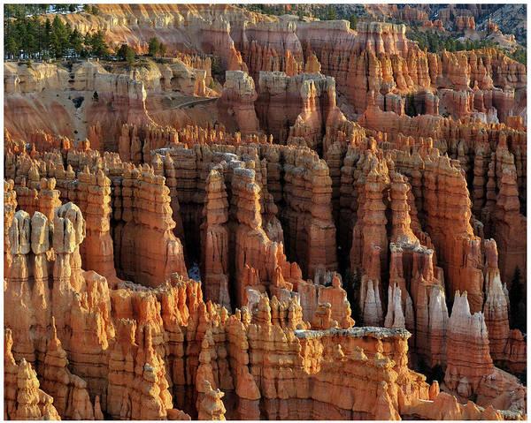 Extreme Terrain Art Print featuring the photograph Those Hoodoos. Bryce Canyon by John Rav