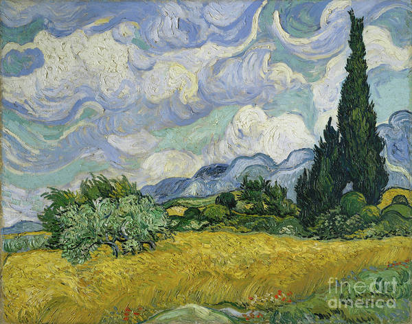 Oil Painting Art Print featuring the drawing Wheat Field With Cypresses by Heritage Images