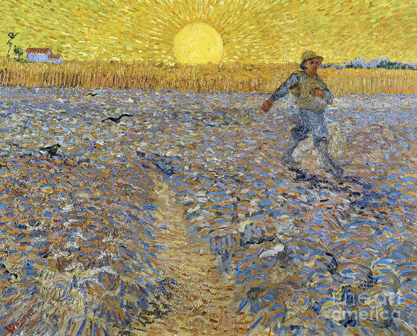 The Sower Art Print featuring the painting The Sower, 1888 by Vincent Van Gogh