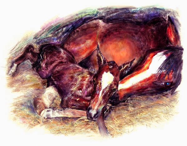 Horse Art Print featuring the painting Awkward First Meeting Arabian Mare With Newborn Foal by Connie Moses